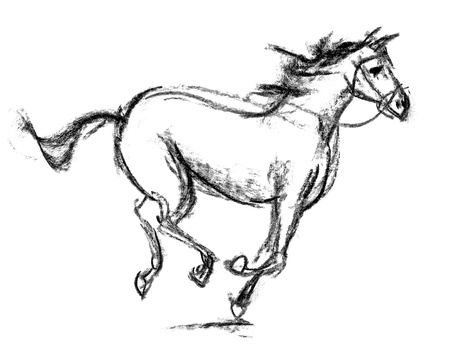horse fly: Horse, Hand-drawn, Phase of the movement
