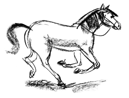 black and white image: Horse, Hand-drawn, Phase of the movement