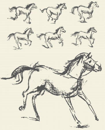 equine: Phase of the movement, Horse, Set, Hand-drawn Illustration