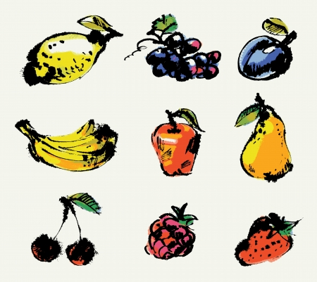Set of fruits, Hand painted illustration, Vector illustration Stock Vector - 16741465