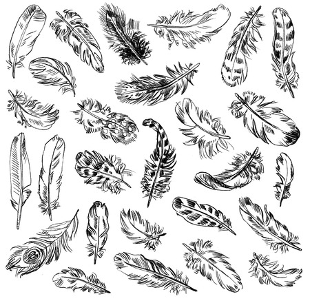 old items: Freehand drawing quill. Vector illustration. Isolated on white background Stock Photo