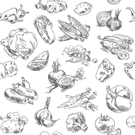 Repollo: Dibujo a mano alzada verduras. Ilustraci�n del vector. Seamless pattern. Aislado en el fondo blanco