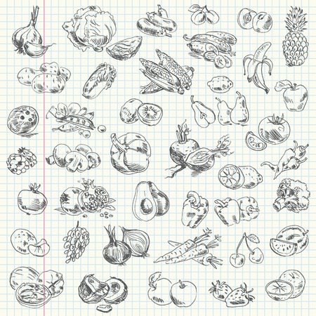 Freehand drawing fruit and vegetables on a sheet of exercise book  Vector illustration  Set Illustration