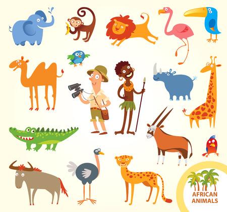 jirafa cute: Establecer divertidos animales africanos. Vectores