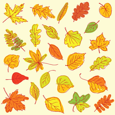 old items: Freehand drawing autumn leaves items on a sheet of exercise book.  Illustration