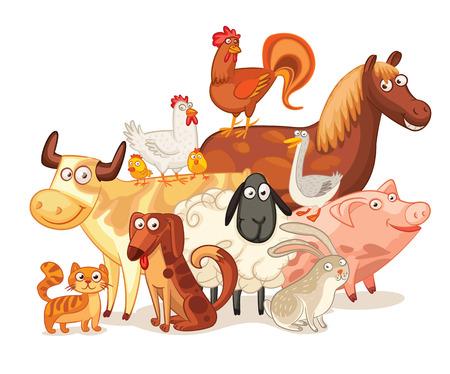 pollo caricatura: Historieta divertida.