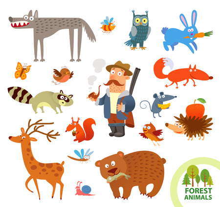 cartoon hare: Set funny forest little animals.  Illustration