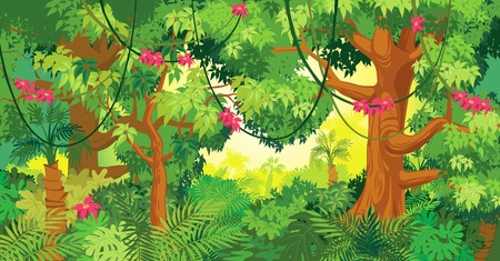 In the jungle illustration Vettoriali