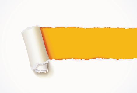 Curl of white paper.  Vettoriali