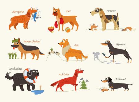 Dog breeds illustration Isolated on white background.  Ilustração