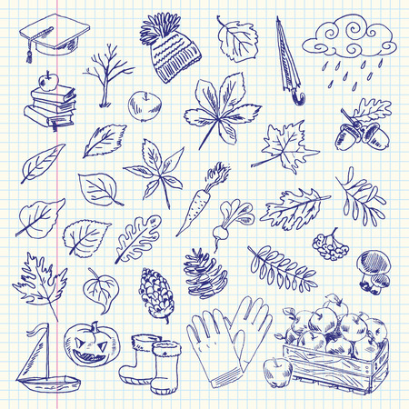 Freehand drawing autumn items on a sheet of exercise book. Vector