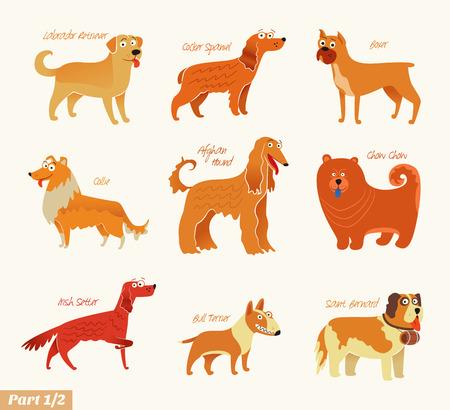 puppy cartoon: Dog breeds  illustration Isolated on white.