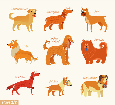Dog breeds  illustration Isolated on white.