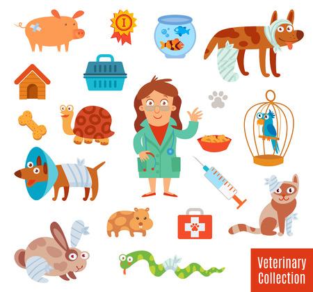 veterinaria: Clínica veterinaria. Pet Vet. Conjunto de instrumentos médicos y equipos médicos. Personaje de dibujos animados divertido. Aislado en el fondo blanco. Ilustración del vector. Iconos planos. colección de símbolos de estilo moderno diseño