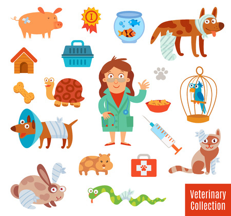 cute animal cartoon: Veterinary Clinic. Pet Vet. Set of medical tools and healthcare equipment. Funny cartoon character. Isolated on white background. Vector illustration. Flat icons. Modern design style symbol collection Illustration