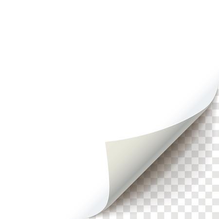 Foglio di carta con curl pagina con ombra trasparente. Ricci Pagina angolo illustrazione realistico. elemento grafico per i documenti, modelli, manifesti, volantini, pubblicità e messaggio promozionale Vettoriali