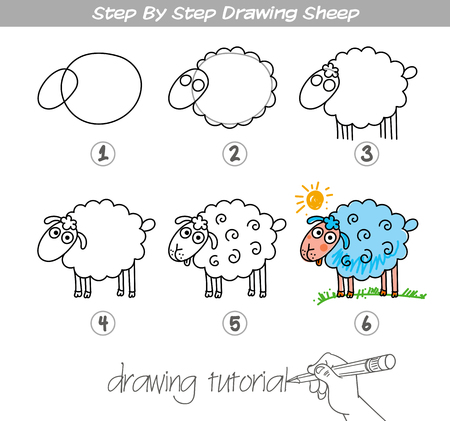 Drawing tutorial. Step by step drawing Sheep. Easy to drawing Sheep for Children. Vectores