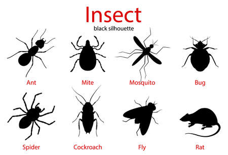 Pest Control insect black silhouette set, insect icons isolated on white, flat style Vector Illustration