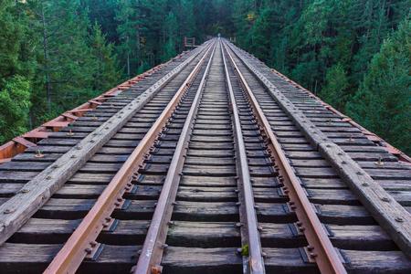 railway tracks: Colorful railway tracks merging into the wilderness