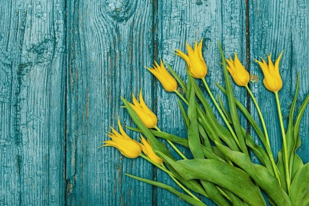 Tulips on a wooden background, Easter, the Mothers Day