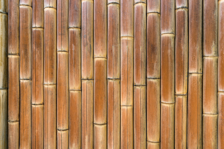 Bamboo Texture, Wood - Material