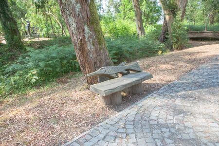 Lonely wooden bench in park under leaves. The view of park. A bench in the park