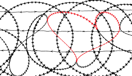 gaol: Natural heart shape (digitally coloured red) in a barbed wire fence isolated on white background. Love, freedom, peace and compassion concepts.