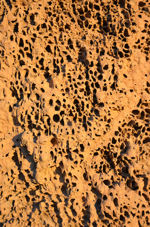 outback australia: Close up of a termite mound in outback Australia Stock Photo