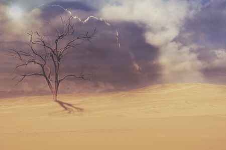 cloudy moody: Dead tree in deserted sand dune under moody cloudy sky. Drought, climate change concepts and surreal landscape. Digital photo manipulation. Copy space for text.