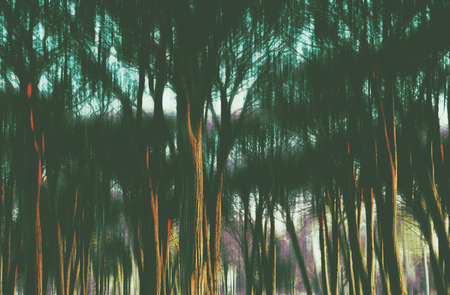 Abstract ethereal woodland at sunset with ghostly birds in flight. Digital photo manipulation.