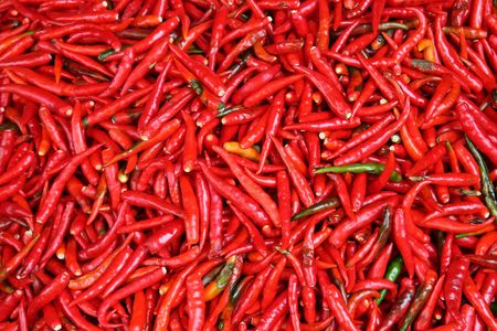 Hot Red Chillies photo