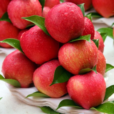 pile of leaves: Red Apples Stock Photo