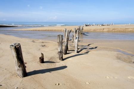 Posts on Khuek Khak beach across a river estuary, Khao Lak, Thailand photo