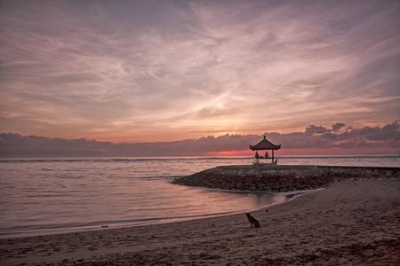 sanur: Dog on beach at dawn, Sanur, Bali Stock Photo
