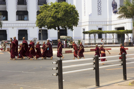 raod: Yangon, Myanmar-May 4th 2014: Young monks crossing the raod outside Yangon City Hall. Most Burmese boys attend a monastery for 3 months from the age of 7.