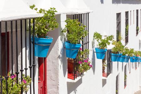 whitewashed: Blue plantpots against whitewashed walls, Mijas, Andalucia, Spain