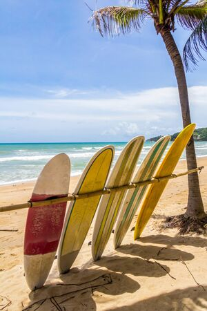 Surfboards for hire on Surin Beach, Phuket, Thailand.