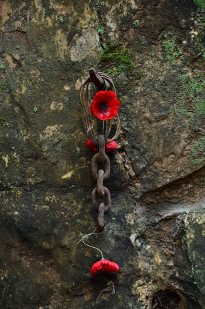hellfire: Poppy Flowers and Chain, the memorial sign of suffering and torturing for Prisoners of War who were forced to built the deadly railway by Japanese Troop at Hellfire Pass, Kanchanaburi, Thailand  Stock Photo