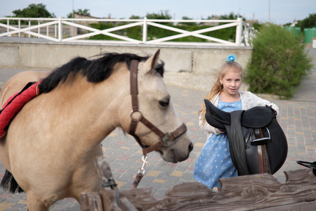 little girl cleans and combs her pony and saddles him to ride Stock Photo