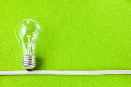 Concept ecology. Light bulb on green background with copy space Reklamní fotografie