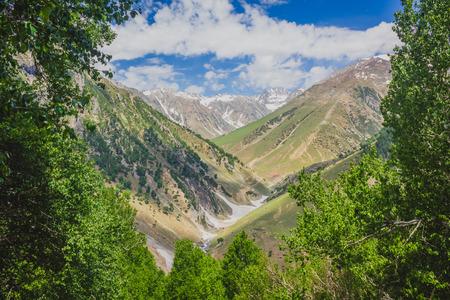 highlands region: Green Valley