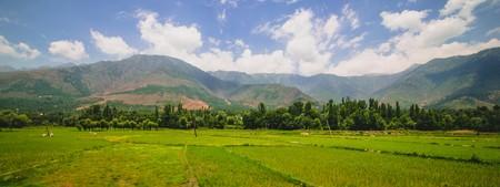 idyllic: Idyllic landscape Stock Photo