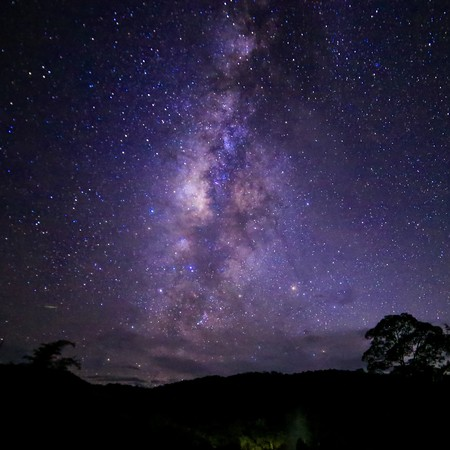 estrella de la vida: Campo Foto amplia exposición a largo de la Vía Láctea