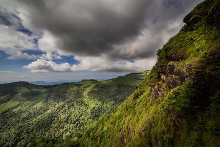 subtropical: Subtropical rainforest and mountains