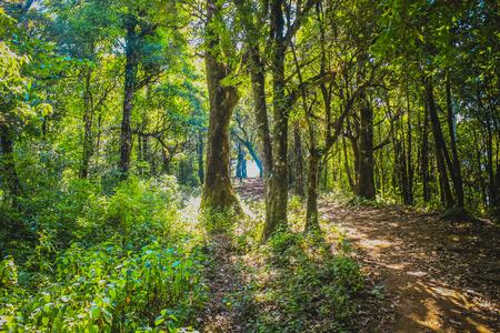 wilderness area: Wilderness Area
