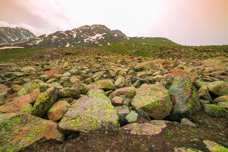 leah: Stones on a field, Kashmir, India.