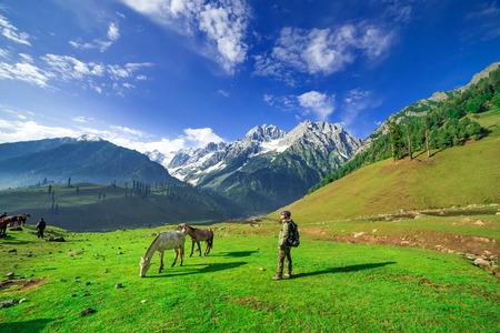 kashmir: Hiking on Sonamarg mountain, Kashmir India Stock Photo