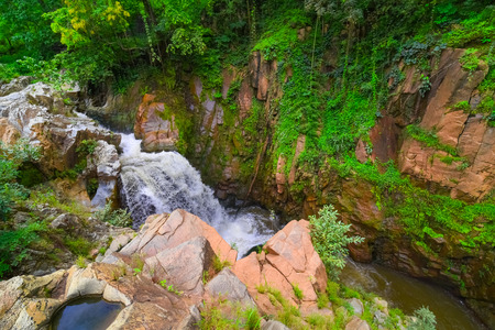 lush: Waterfall in a lush rainforest. Beautiful waterfalls