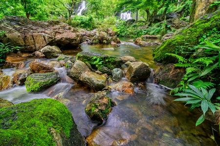 Waterfall and moss cover on stone in jungle