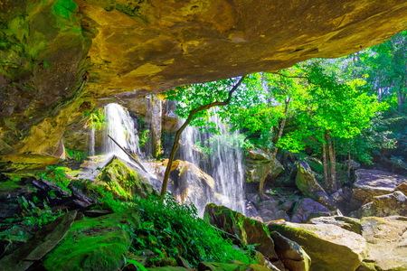 View from behind a tranquil waterfall